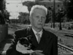 Umberto D (dir. Vittorio De Sica, 1952)